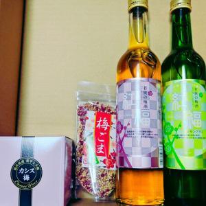【レポ】紅福2種(梅酒):梅ぼしの福梅 / 他、お買い得情報pickup!帝国ホテルスープギフト62%OFF激安レギンスサプリetc…