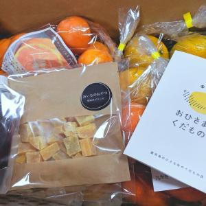 【ネタバレ】選べる柑橘の詰合せセット(福袋):おひさまとくだもの(クルス農園)/ 他、お買い得pickup!30本226円BOSSコンソメetc…