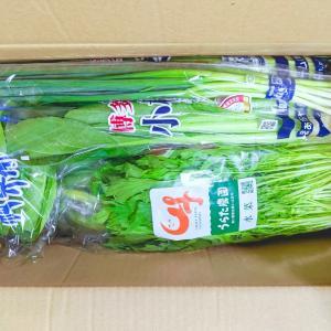【ネタバレ】九州野菜セット 15品(2回目):大津留青果 / 他、お買い得pickup! 再販フル箱復興福袋半額以下こんにゃく系etc…