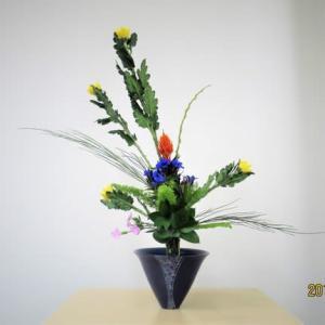 菊とエニシダ・・立花