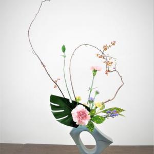 ツルウメモドキ1本600円・高い・・曲線で自由花