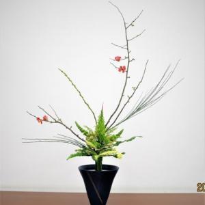 ボケで、立花・生花・・木物は貴重な花材