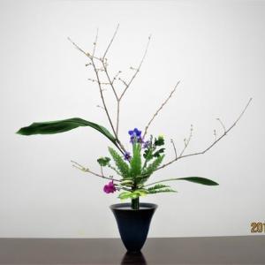 ロオバイの立花・・良い香りの花
