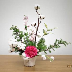 綿の木とカーネーション・・クリスマス花