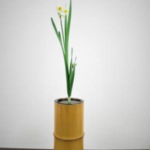 水仙の生花・・品があって美しい