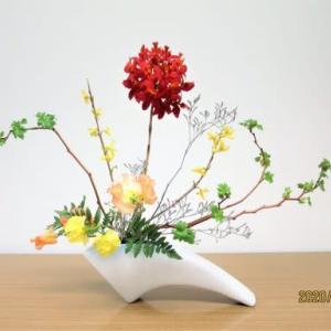 エビデンドロビュームとキイチゴ・・自由花・線を面白く