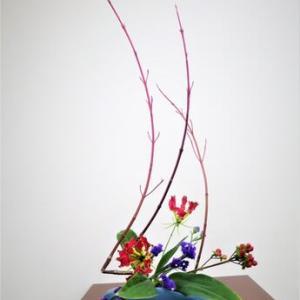 サンゴミズキとグロリオーサ・・動きのあるデザインに自由花