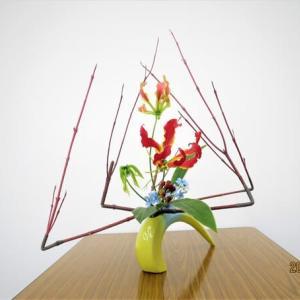 グロリオーサ・ブルースター・・面白い自由花