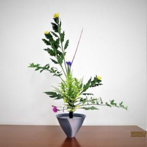 菊とアイリス・立花・・細かい技が沢山