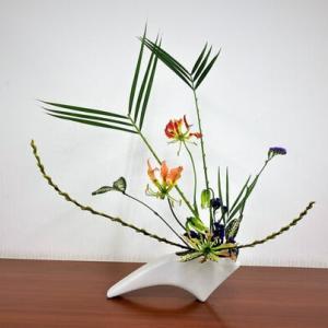 アレカヤシの面とキンメヤナギの線・グロリオーサ・・楽しい自由花
