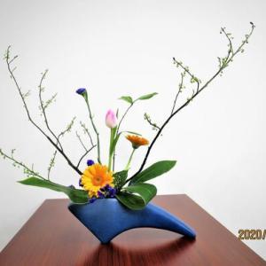 付き枝を面白く組合す・アオモジ・・自由花