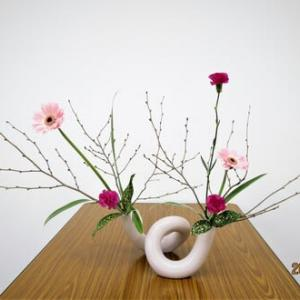 トサミズキの枝・面白い模様・・カーネーション自由花