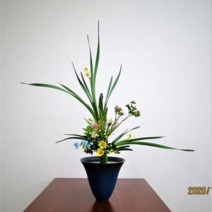 水仙の立花・・花・葉にワイヤーをすべて通す・時間が掛る