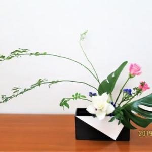 白いクルクマジンジャーとモンステラの面・・自由花
