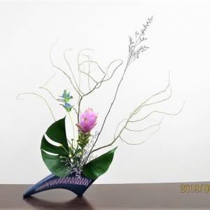 ウンリュウヤナギの曲線を生かした・・面白い自由花