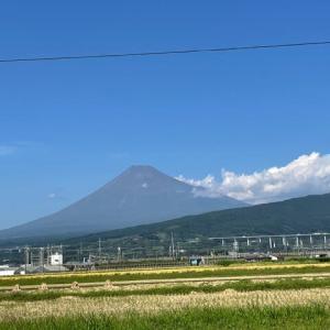 富士山の初冠雪が取り消されました