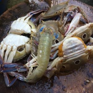 タイ人夫が海で獲ってきてくれた蟹!で、作ったプーパッポンカリー