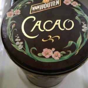暑さで朦朧!?チョコレートを床にぶちまける