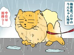 雨やどりのつもりが・・・