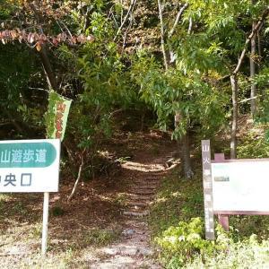 岐阜 三峰山
