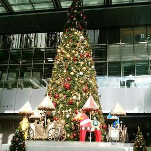 朝のクリスマスツリー
