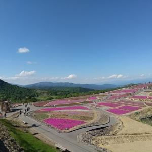 茶臼山ナウ