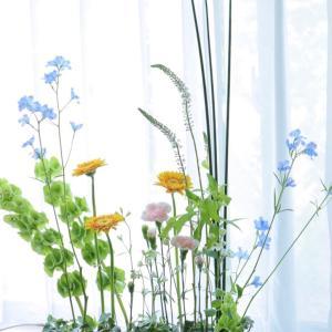 植物の茎を生かしたデザイン