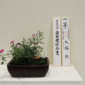 神代植物公園65周年秋のバラ展 その2
