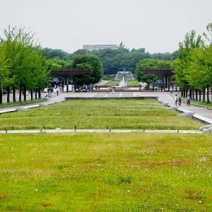 静かな晴天の昭和記念公園を訪れました その1