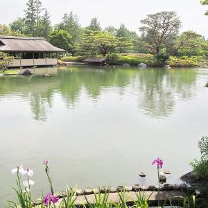 静かな晴天の昭和記念公園を訪れました その5