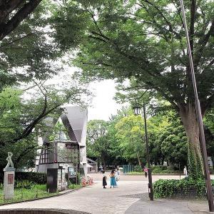 7月だというのに涼しく静かな上野公園です その3
