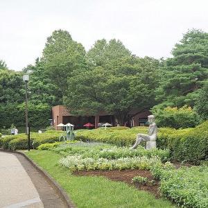 広々とした緑の神代植物公園は一気に夏模様に その1