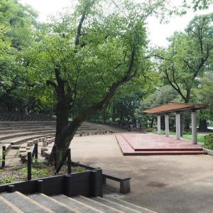 石神井公園の樹々が 其の2