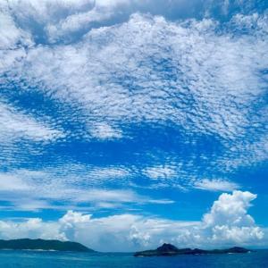 青い空と青い海^ - ^