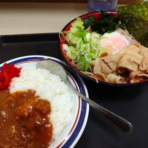 |M1623|立ち食い店のインプレッション:王子駅北口西側『富士そば』で久々に頂く冷やし肉富士そば&ミニカレーは盤石の出来でした!〔付:立ち食い店とは?おなか一杯にならないのは?〕