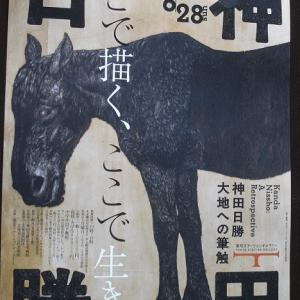 神田日勝 大地への筆触 を観る