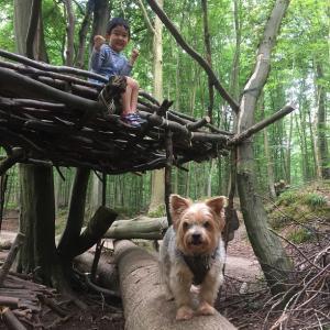 TAROと森で遊ぶ
