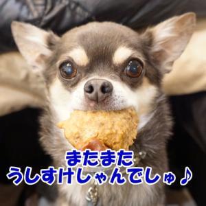 もっと味わって食べて~(´∀`;;)@東京旅行2018⑪