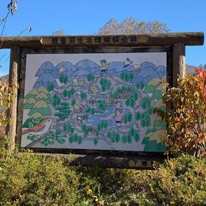紅葉の観音沼森林公園
