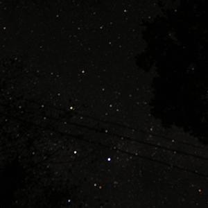 お山の星空撮影とドッグカフェ
