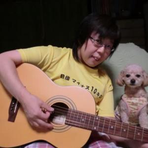 ヒメコとギター