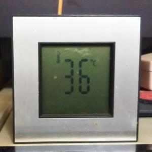 猛暑日続き