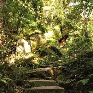 城跡のギリギリ神社