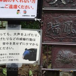 岩手に行ってみた&おまけ仙台旅(その8・伊達政宗159.4cmB型)