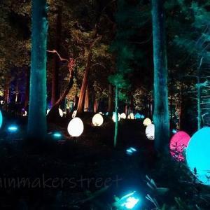 光の祭 - teamLab in 偕楽園 !!