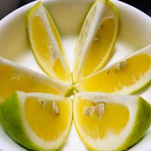 丘産レモン(ФωФ)
