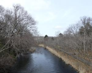 おはよう橋から千歳川(定点観察)2020/04/01