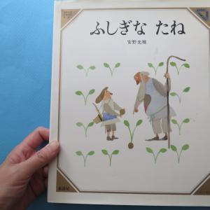 <絵本紹介><ブックカバーチャレンジ4>「ふしぎなたね」安野光雅