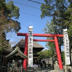 青井阿蘇神社( ̄ー ̄ )ゞ