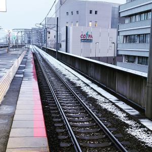 京都市内は雪!!